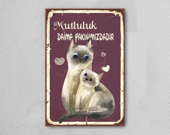 Kediler Mutluluk