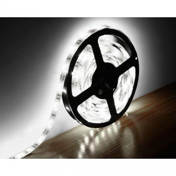 Gadahome Hanover 3 Çip İçmekan Şerit Led 12V (Beyaz Işık) - 5MtLik Pake
