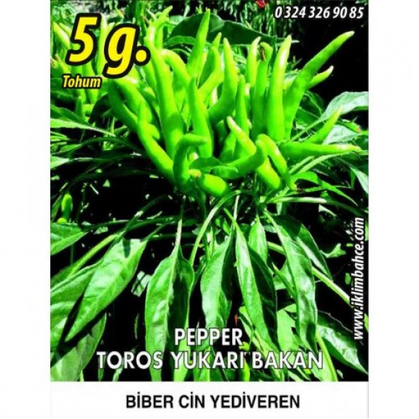 Biber Tohumu Toros Yukarı Bakan Yeşil Süs - 5 g (~ Takribi 400 Tohum)