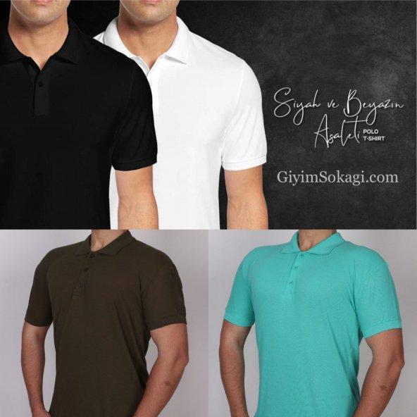 4 Adet Polo Yaka Erkek T-shirt EWS20900
