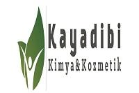 Kayadibi