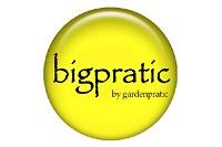 bigpratic
