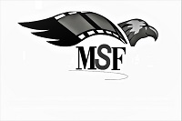 MSF Avm