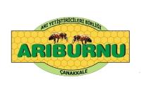 Arıburnu