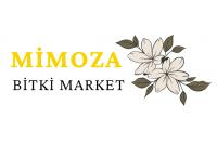 Mimoza Bitki Market