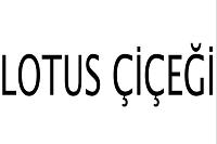 LOTUS ÇİÇEĞİ