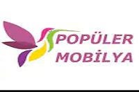 Popüler Mobilya