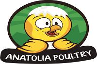 Anatolia poultry