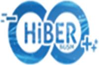 HiberBilisim
