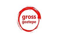 Gross Goztepe