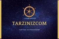 tarzinizcom