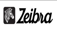 zeibra